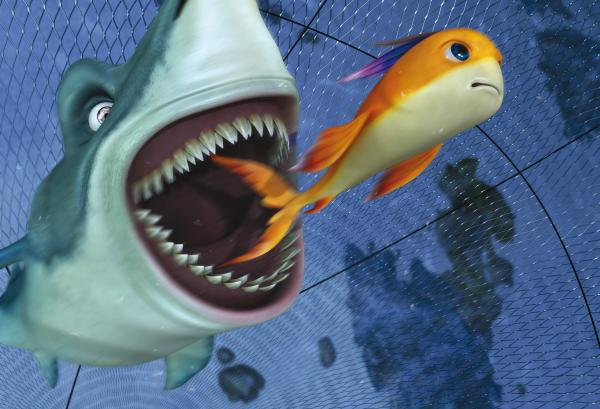 наилучшая наживка для акулы