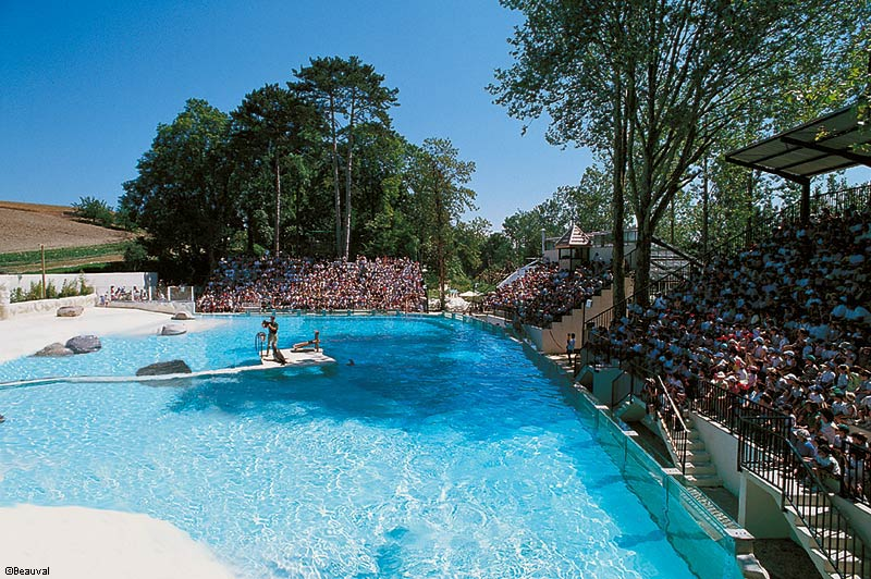Top zoo de beauval parc animalier et h tel for Hotels beauval