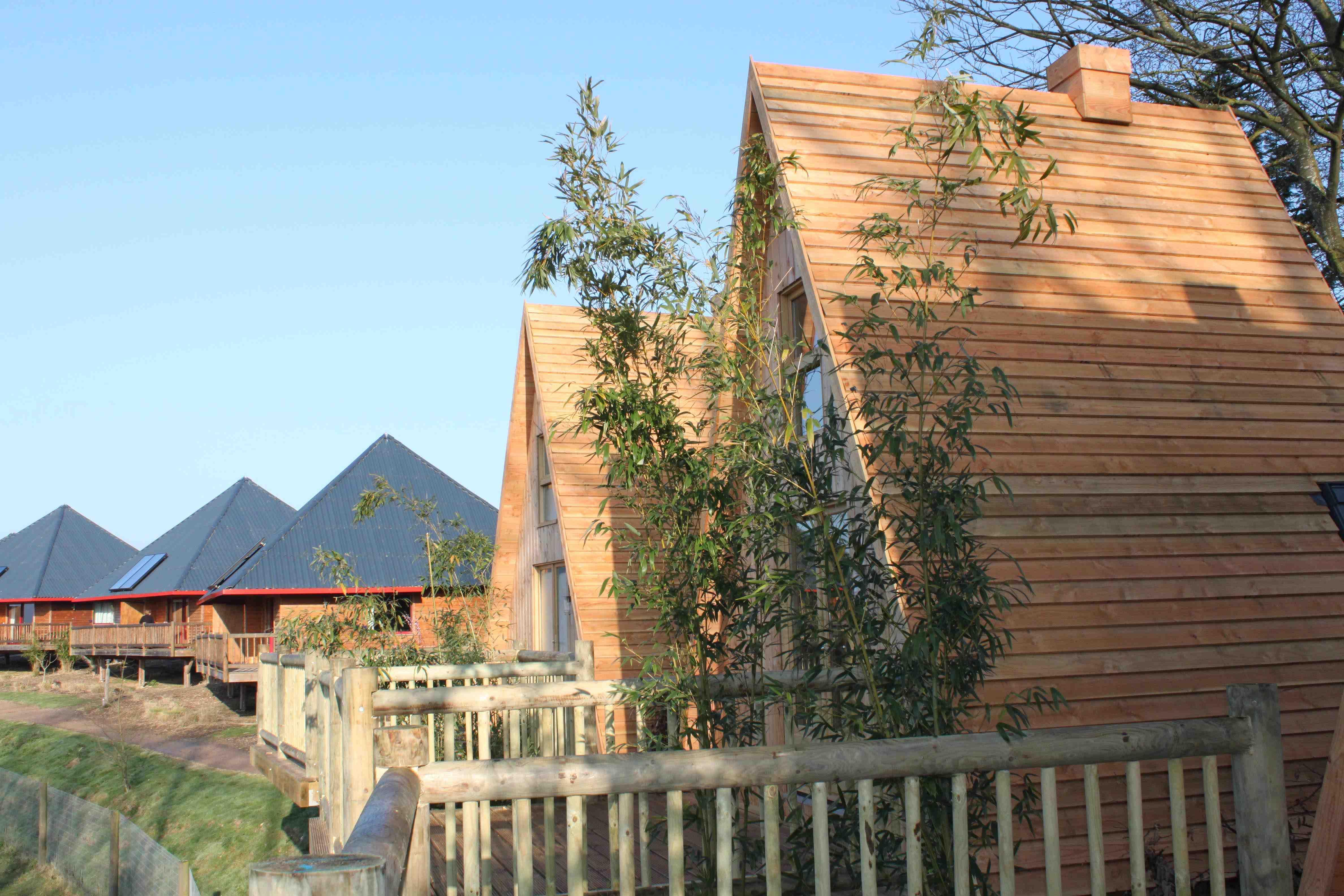 top parc zoologique du cerza gite safari lodge lisieux parcs animaliers sorties. Black Bedroom Furniture Sets. Home Design Ideas