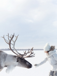 Finnair_Lapland_woman_reindeer