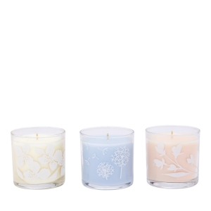 PARTYLITE_MINI_BOUGIES_SIMPLE_VIBES_2