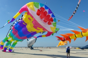 RENCONTRES_INTERNATIONALES_DE_CERFS-VOLANTS_DE_BERCK-SUR-MER_-_CREDIT_PHOTO_VILLE_DE_BERCK-SUR-MER_7