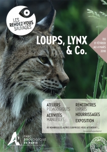 loups_lynx_and_co